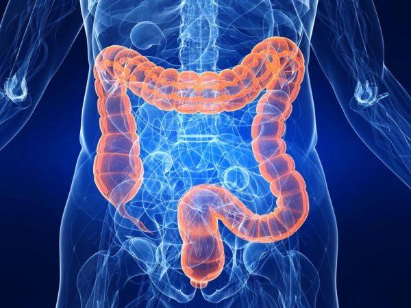 заболевания кишечного тракта